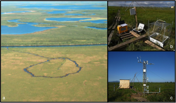 (a) aerial view of the Chersky observation site, including the drainage ditch that modifies hydrologic conditions in part of the area; (b) soil chamber observation setup to monitor small-scale exchange fluxes of CO<sub>2</sub> and CH<sub>4</sub>; (c) one of two eddy-covariance flux towers installed on the site.