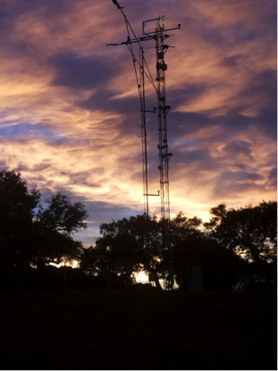 Image of the eddy covariance towers at Majadas del Tietar (the experimental site).