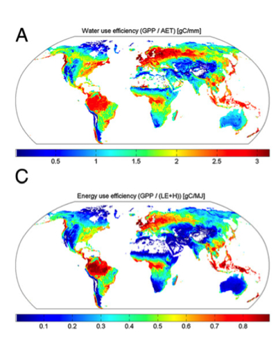 Global distribution of water and energy use efficiency [Reichstein et al., PNAS, 2014].